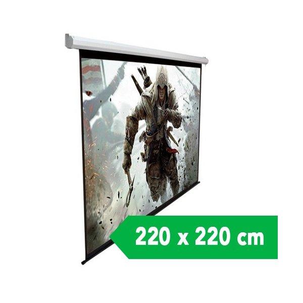 Telon Mural Dinon 2.20x2.20 mts